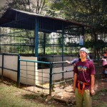 indonesia_tra2011_02