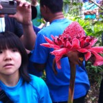 indonesia_tra2011_03