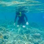 indonesia_pra2011_12