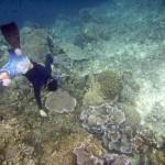 indonesia_pra2011_17