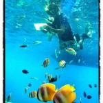 indonesia_pra2012_29