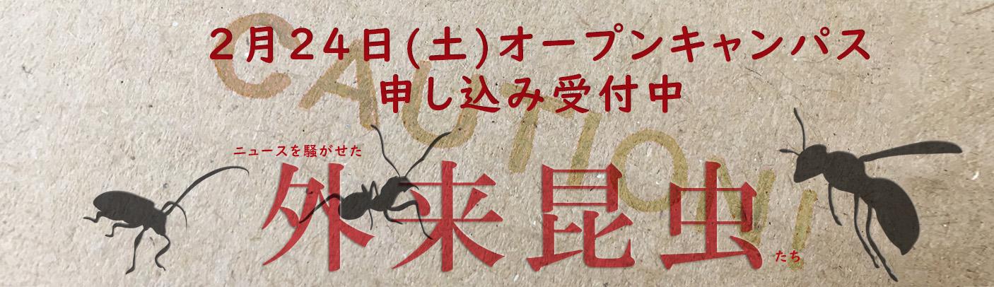 2月24日(土)オープンキャンパス開催